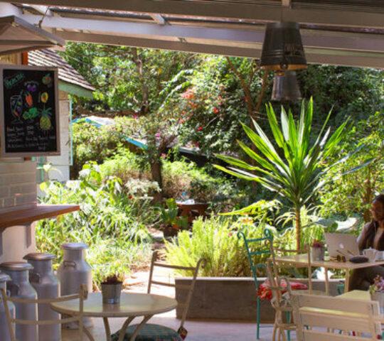 Tin Roof Cafe Karen